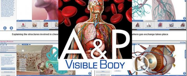 Visible Body Anatomy and Physiology 1.5.04