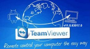 TeamViewer Corporate v11.0.63017.0 FR + Portable