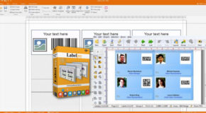LabelJoy Light /Basic /Full /Server 6.20.03.27