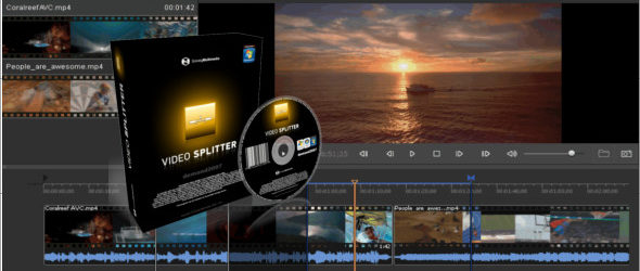 SolveigMM Video Splitter Business 7.3.2005.8