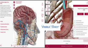 Human Anatomy Atlas v7.4.01