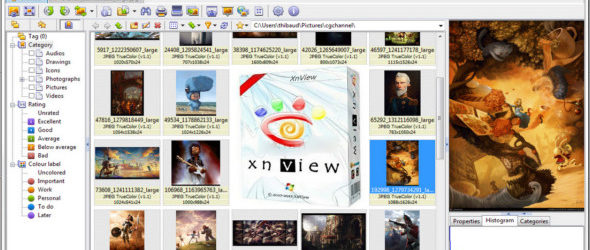 XnView 2.49.3 Complete + Portable