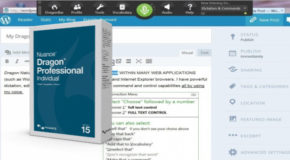 Nuance Dragon Pro Individual 15.61.200.010